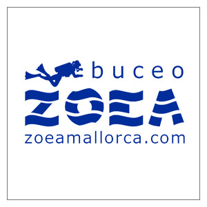 diving--mallorca-zoea