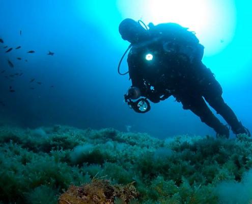diving-mallorca-04