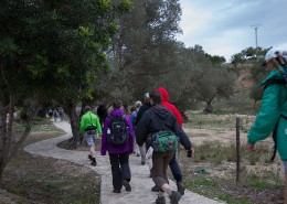 walking-mallorca